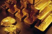 В ячейке нашли слитки золота и валюту. Фото: pk25.ru