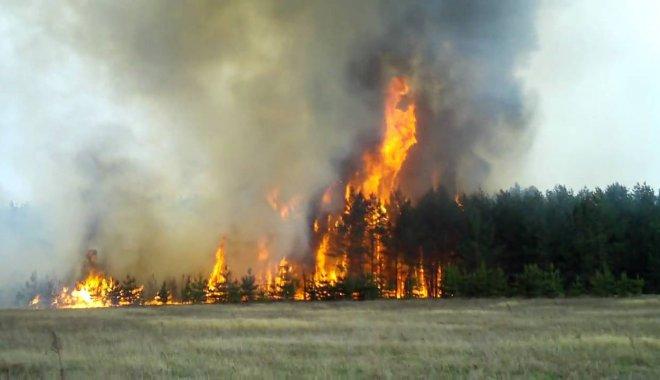 В Укргидрометцентре рассказали, как избежать возгораний в ближайшие дни